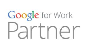 Logo Google partner NiceNet Stradella Pavia